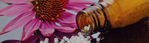 The Homeopathic consultation